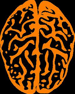 Neben körperlicher Fitness, muss auch kognitives Können unter Beweis gestellt werden