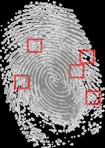 Das Auswerten von Fingerabdrücken ist Teil der Ausbildung beim LKA
