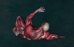 Bei Liegestützen werden die unterschiedlichsten Muskelgruppen aktiviert
